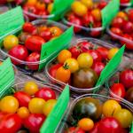 Verschillende soorten tomaten