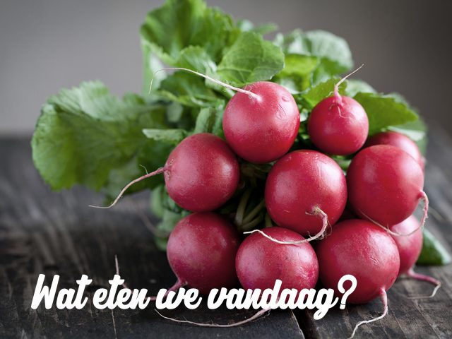 Wat eten we vandaag?